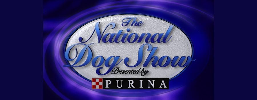 Dog Training Shows On Hulu
